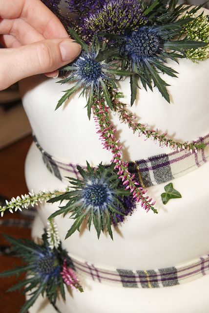 Thistle works really well as match for cool-hued tartans - also possible accent for bouquets/centerpieces