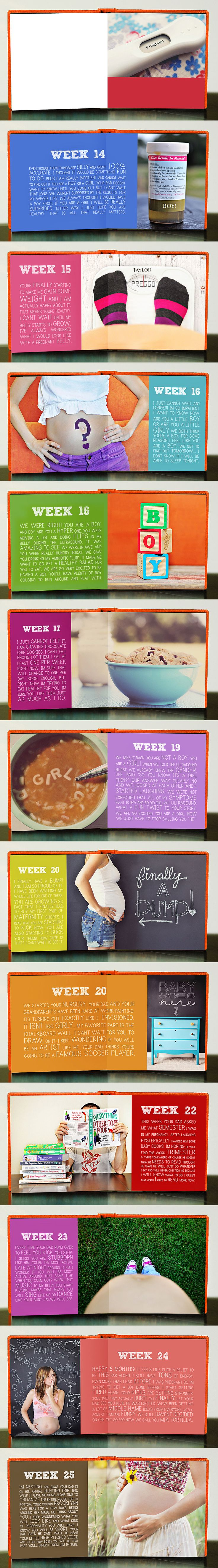 LOVE THIS!!!!! Pregnancy book