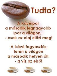 www.ganodermaherbal.hu - ganoderma, ganoderma lucidum, gano excel, gano cafe, wellness kávé