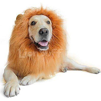 LionBuff Lion Mane Costume for Dog, LionBuff Dog Wig for Holloween Christmas Get