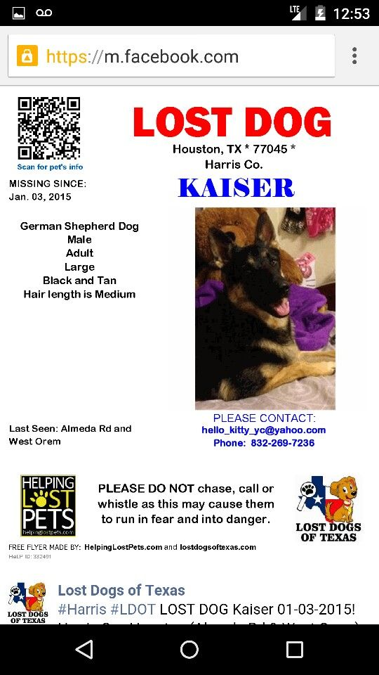 #Lost german shepherd male #KAISER 01-03-15  #Houston #TX