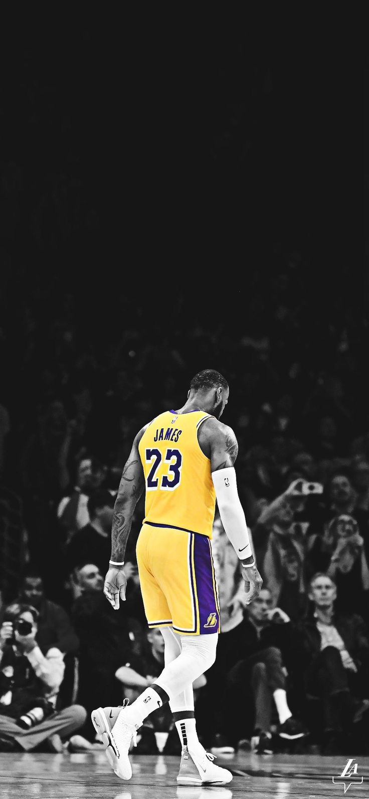 Pin by Swaggy_P (Noah Wade) on Kiss the ring Lebron
