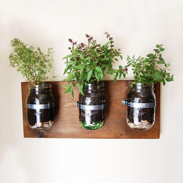 Mason Jar Garden Wall Planters