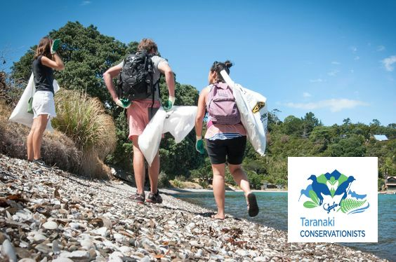 Taranaki Conservationists was setup to empower Taranaki people to engage with conservation through a social, fun approach. Joining our email list is the best way to keep posted on what we are up to - email Taranakiconservationists@gmail.com!