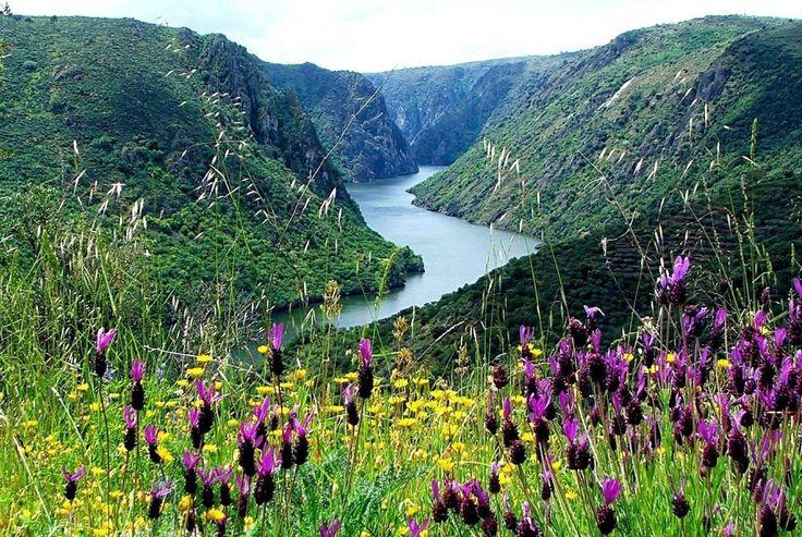 international douro natural park