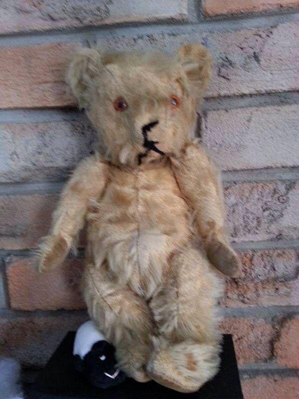 Boxspringbett Nora Nixon Modern Art ~ 1000+ images about Teddy Bear Hugs on Pinterest  Teddy bear dogs