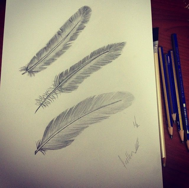 Feather draw