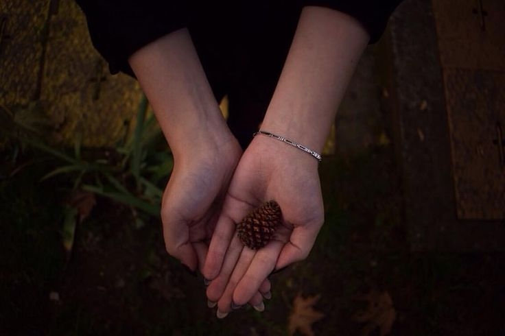 I think it's important to find the little things in everyday life that make you happy 😌💓 . . . . . #paulacole #quotesgram #quote #pinecone #little #small #cute #lovely #picoftheday #pictureoftheday #love #art #artstagram #artsy #photography #photo #fall #autumn #dark #afternoon #instagood #instadaily #bennünkvan
