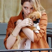 #dogalize Mischa Barton, la bad girl che ama gli animali #dogs #cats #pets