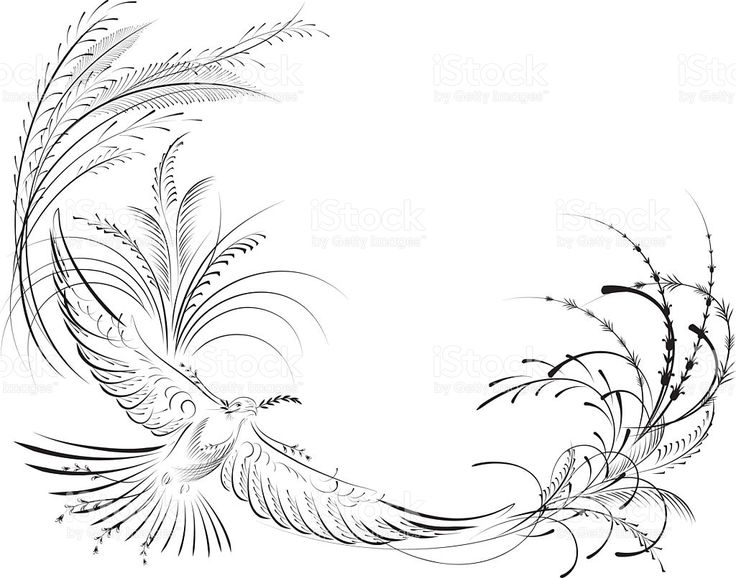 Victorian Calligraphy Dove with Olive Branch royalty-free stock vector art
