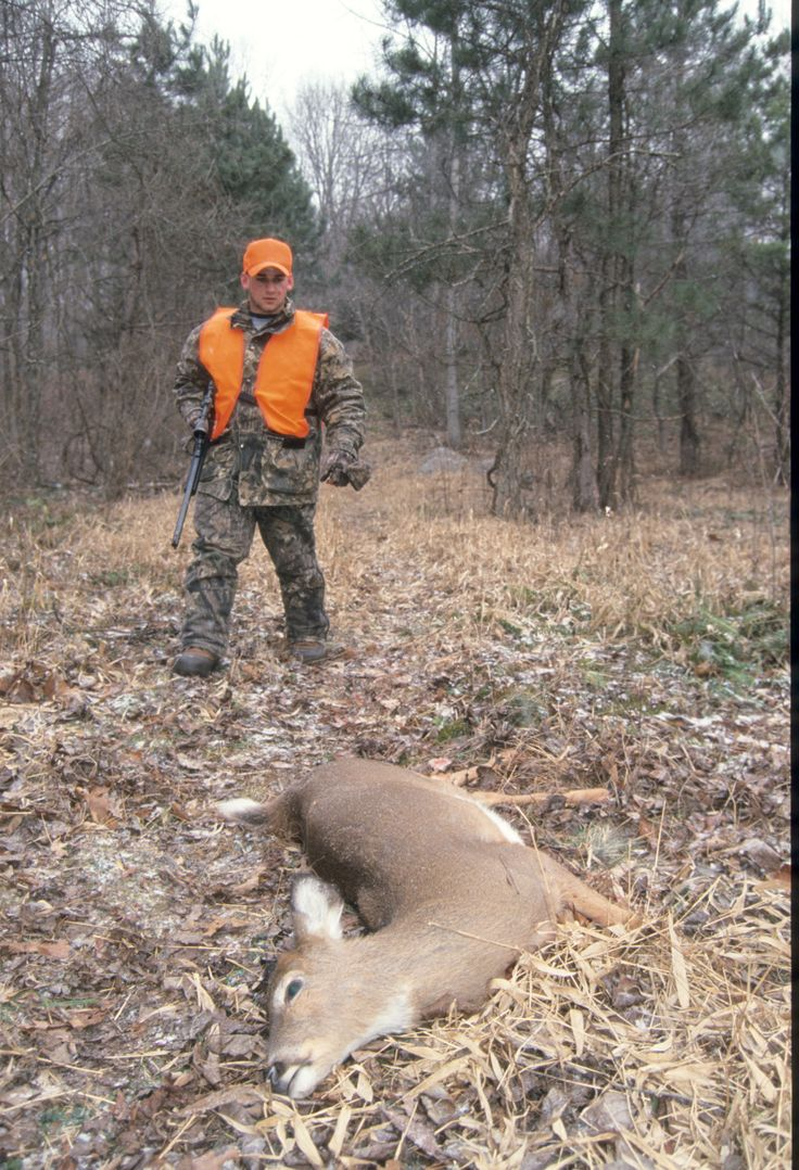 Field Dressing Your Deer download and print step by step