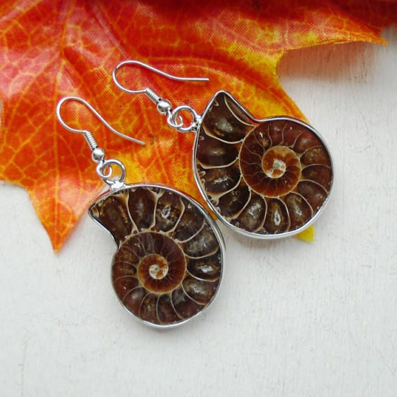 Die Ohrringe haben (mit Haken), eine Länge von ca. 4,6 cm und eine Breite von ca. 2,3 cm.  Die Fossilien haben eine interessante, naturbelassene Farbe. Die Vorderseite der Fossilien ist glatt poliert, die Rückseite ist weitgehend naturbelassen und leicht gewölbt.  Da es sich um ein Naturprodukt handelt, sind kleine farbliche Unregelmäßigkeiten oder Unebenheiten kein Mangel.  Ein Ohrring wiegt ca. 3,6 g.  Haken, Öse und Fassung sind Silber plattiert.  Sie erhalten das Paar Ohrringe, das…