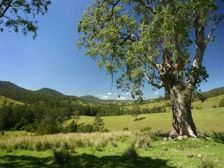 Dungog - small town in country New South Wales, Australia. My hometown :-)