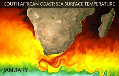 Sea surface temperature along the South African coastline