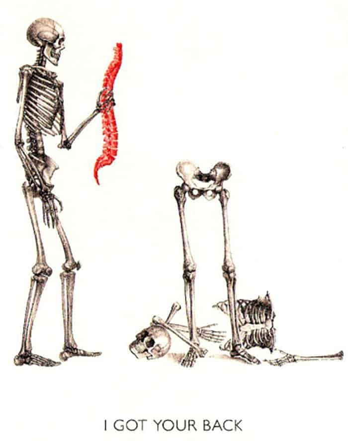 Human Arm Bone Png & Free Human Arm Bone.png Transparent Images #130653 -  PNGio