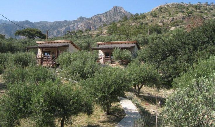 Natuurhuisje 29620 - vakantiehuis in Kalyvitis, Orino
