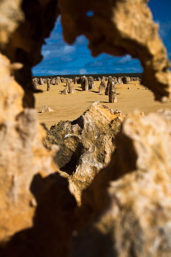 Pinnacles Desert Walk, Nambung National Park Western Australia