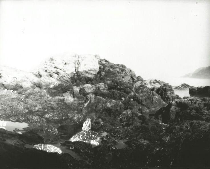 """Encave"",2015-pinhole photograph (chloe obermeyer)"