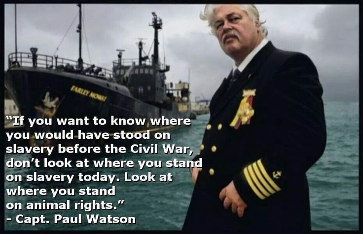 Great quote on animal slavery by Paul Watson