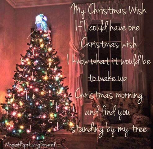Please Please I'll put up a tree just for you!