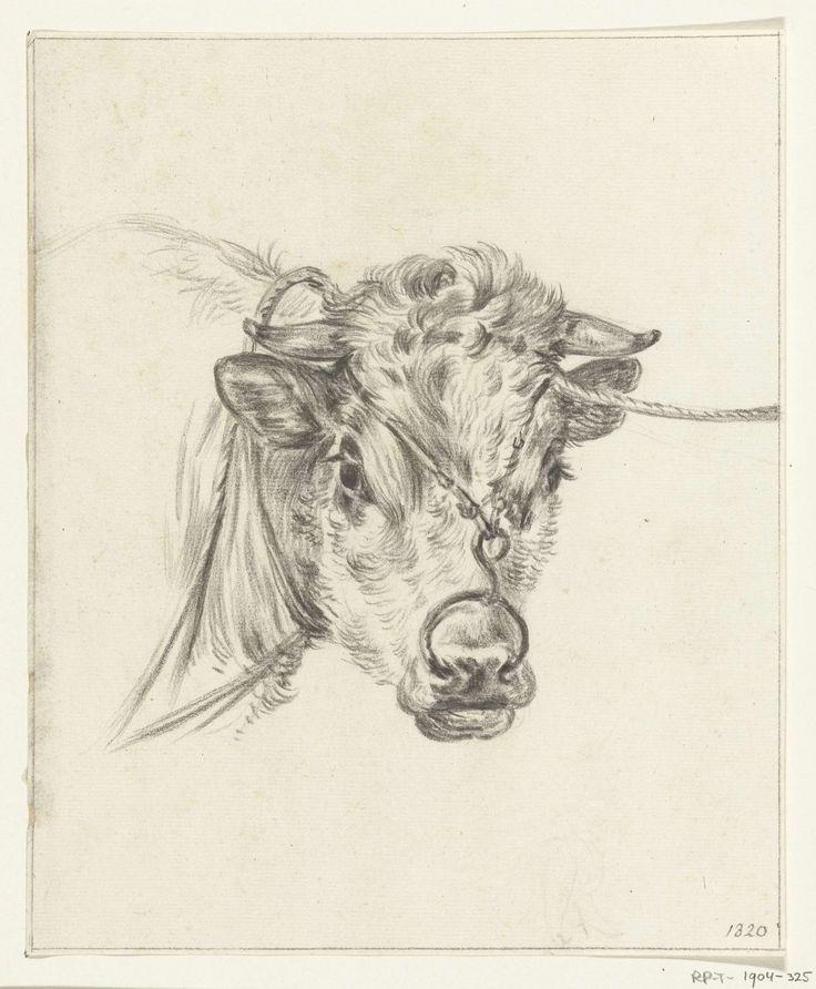 Jean Bernard | Kop van een koe, met een ring door de neus, Jean Bernard, 1820 |