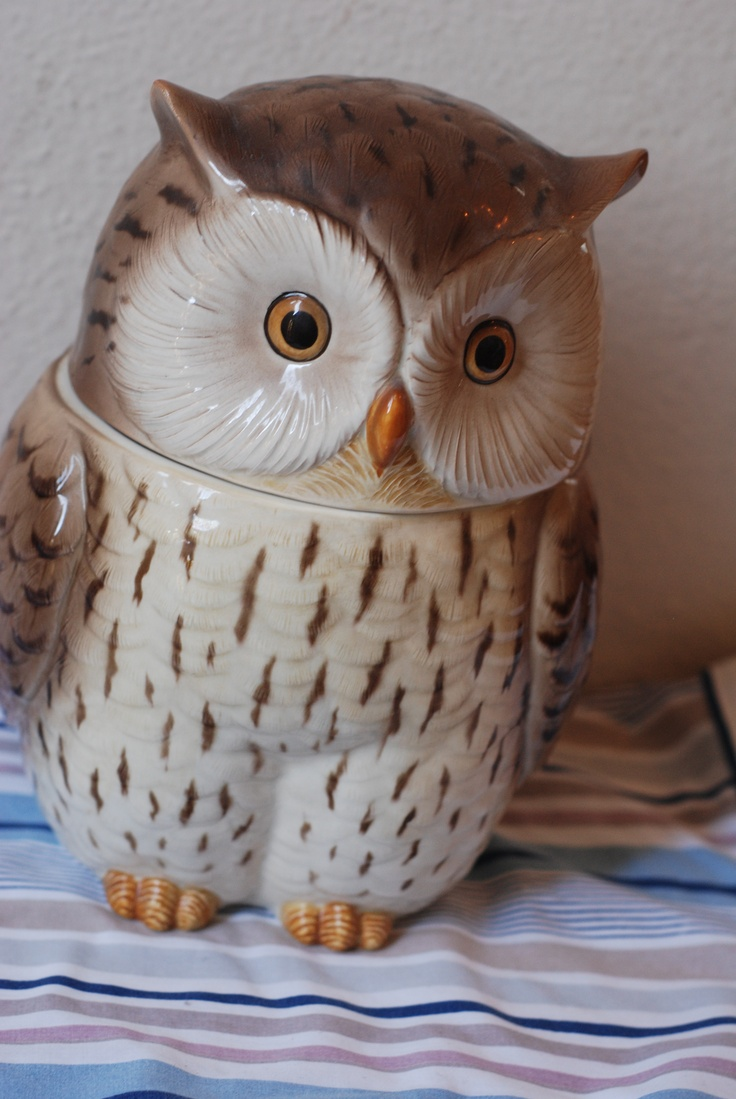 Owl cookie jar. Love!