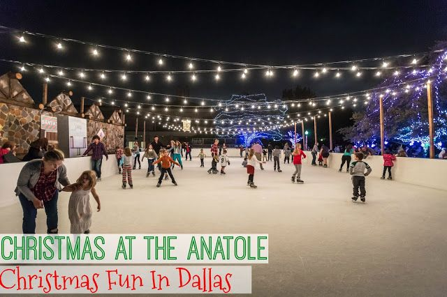 Savvy Southern Belle: Christmas in Dallas