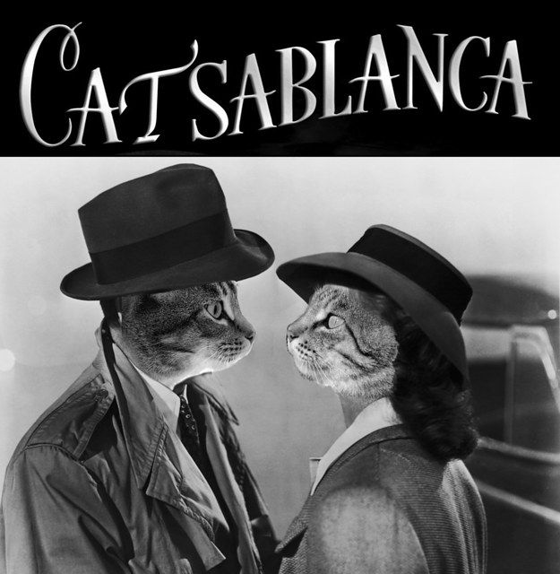 casablanca rick and renault relationship quotes