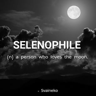 They all had powers that had something to do with the moon, it seemed, so they decided that they would be called Selenophilists