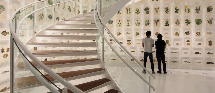 O saguão de entrada do Espaço Olavo Setúbal, que vai abrigar mais de 1.300 peças das coleções Brasiliana e de numismática do Itaú Foto: Michel Filho / Agência O Globo