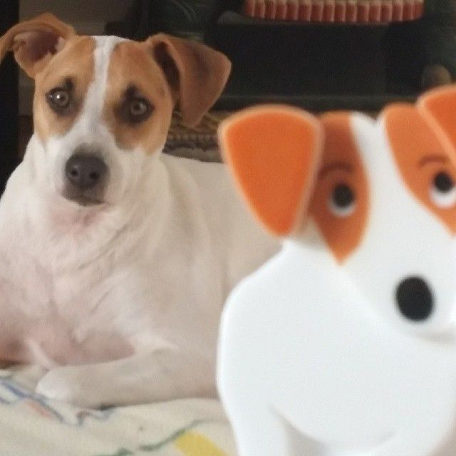 Another lookalike for our Jazzy Jeff Jack Russell brooch! Love it!