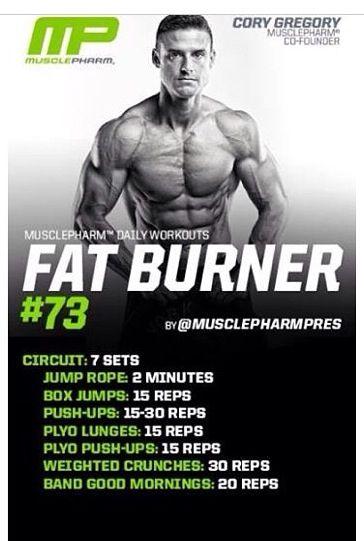 Fat burner 73