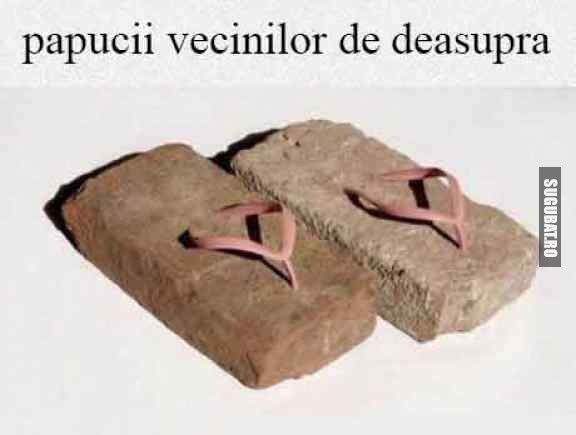 Papucii vecinilor de deasupra