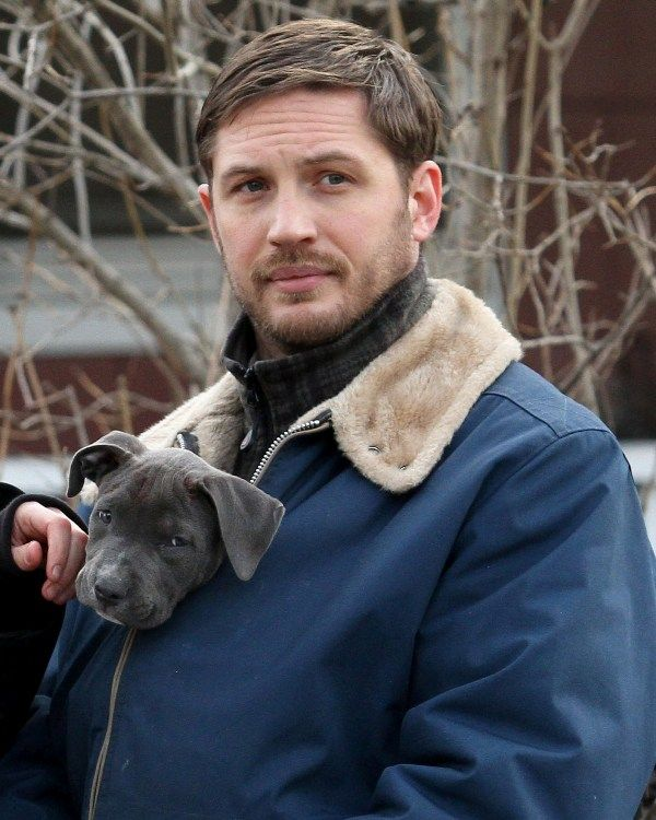 If You're Fuckin' Dead Right Now, It's Not Tom Hardy's Fault