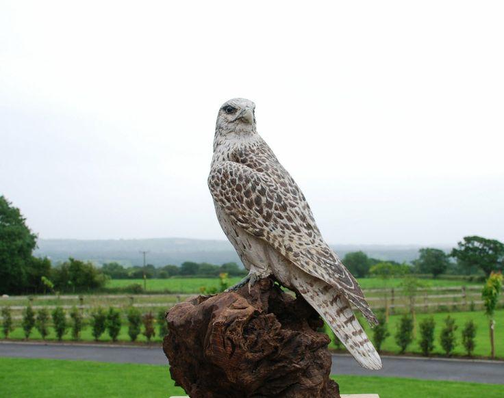 Gyre falcon wooden sculpture original sculpture and for Original sculptures for sale
