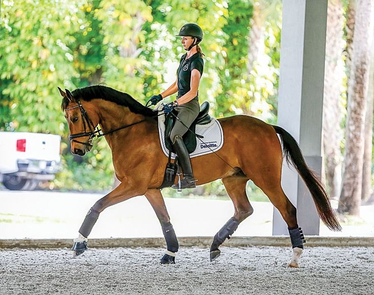 Touring Wellington's Top Dressage Barns/ Laura Graves and Fizzy at Havensafe Farm
