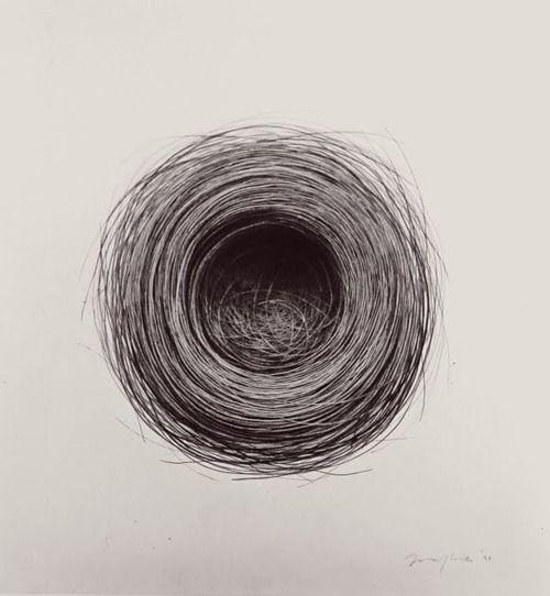 "Jonathan Delafield Cook 's drawing ""Bird's Nest, 1998"""