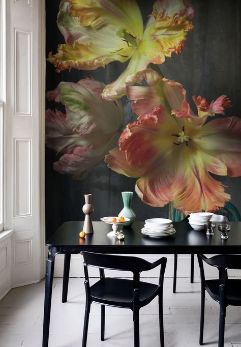 'Bursting Flower Still' Mural - Trunk Archive Collection from £65 per sq/m | Shop Canvases & bespoke Wall Murals at surfaceview.co.uk