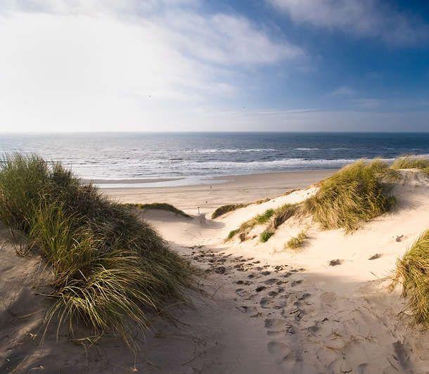 Tuinposter 'Pad door de duinen'
