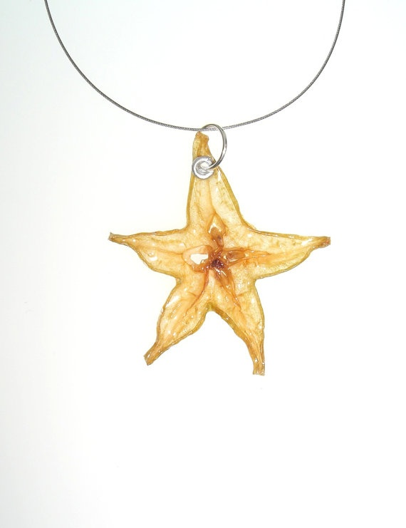Starfruit Necklace by realfruitjewelry on Etsy...A whimsical, nature-inspired piece, handcrafted from a real slice of starfruit. This piece is absolutely one of a kind! The starfruit is shaped beautifully and has golden green earthy tones.
