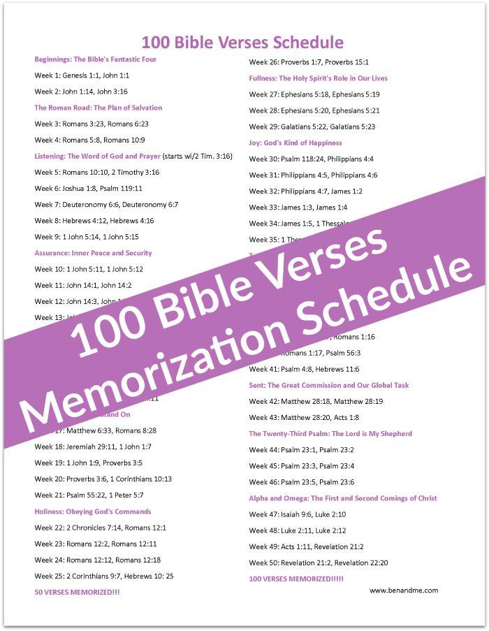 The Memorization Study Bible | Answers in Genesis