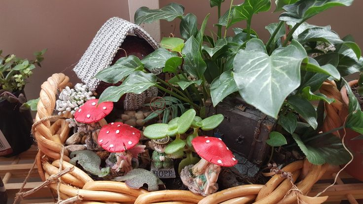 My little fairy garden :)