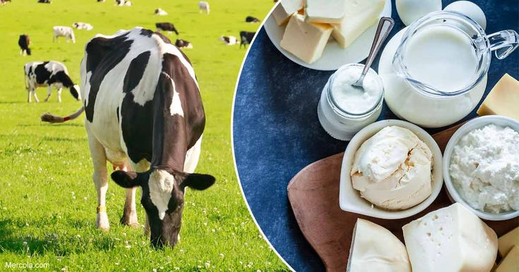 """Recent studies reveal that when cows eat a diet known as """"grass fed"""" 100 percent of the time, they produce milk with a more balanced mix of all-important fatty acids, including omega-3 and omega-6. https://articles.mercola.com/sites/articles/archive/2018/03/12/grass-fed-dairy.aspx?utm_source=dnl&utm_medium=email&utm_content=art3&utm_campaign=20180312Z1_UCM&et_cid=DM192416&et_rid=240839131"""