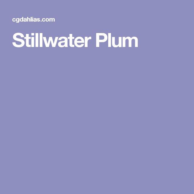 Stillwater Plum