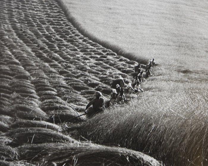Ernö Vadas (1937)