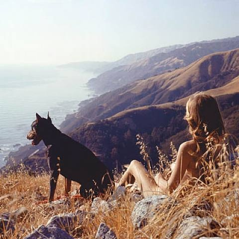 Big Sur by Hunter S. Thompson: Artists, Big Sur California, Hunters S Thompson, Self Portraits, The View, Hunters Thompson, Quiet Time, Photo, Watches Dogs