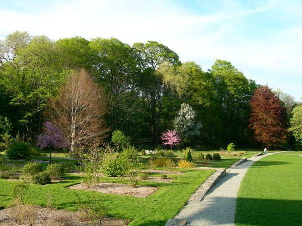 Arnold Arboretum Garden Chris Walton USA