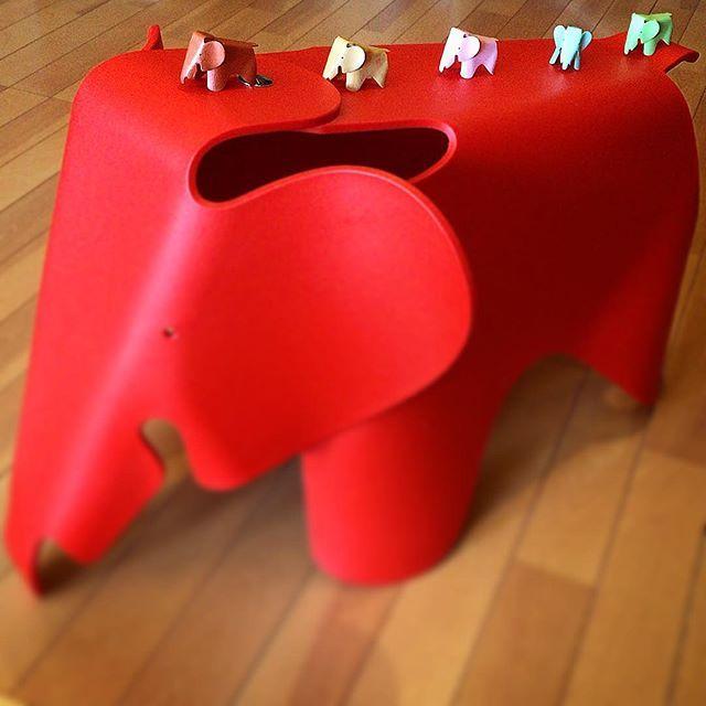 THE ARCHIVE BY KAWATATSÜ® #collection 097 #いいね Eames Elephant イームズ エレファント 2010 大好きなイームズの、イームズ エレファント。 対象年齢は3〜14歳ですが…僕も座ります。笑 ちなみに、チャールズとレイの命日は、 2人ともに8月21日です。 #atelier #アトリエ #archive #アーカイブ #kawatatsu819 #Likes #好き #love #愛 #charleseames #チャールズイームズ #rayeames #レイイームズ #eames #イームズ #チャールズアンドレイイームズ #eameselephant #イームズエレファント #elephantstool #エレファントスツール #good #グッド #nice #ナイス #cool #かっこいい #cute #かわいい @vitrafurniture @eamesoffice