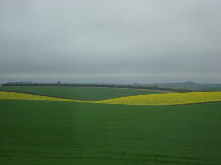 Stonhenge fields