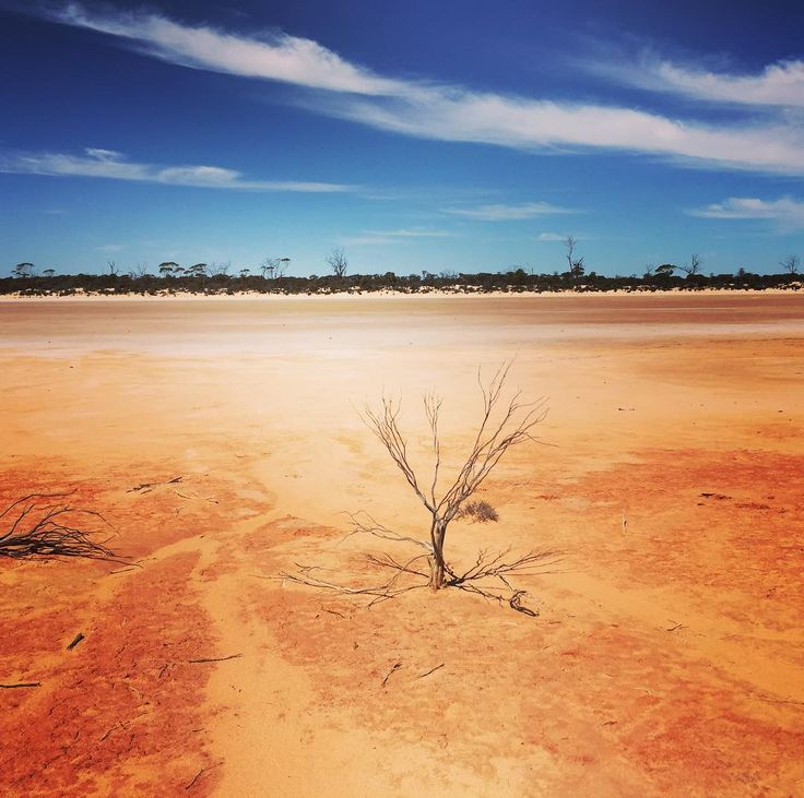 #isjon_isgood Colours of the Australian outback .One of my favourite locations to shoot in Western Australia #westernaustralia #nature #colors #australia #outback #pantone #saltlake